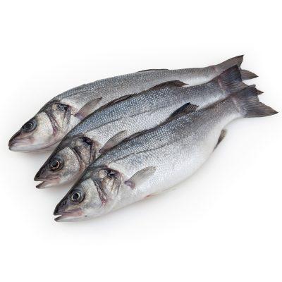 Pescado y derivados